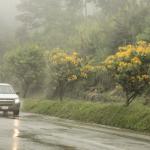 ¡Conduce seguro en temporada de lluvias por la carretera Bogotá-Girardot! 9